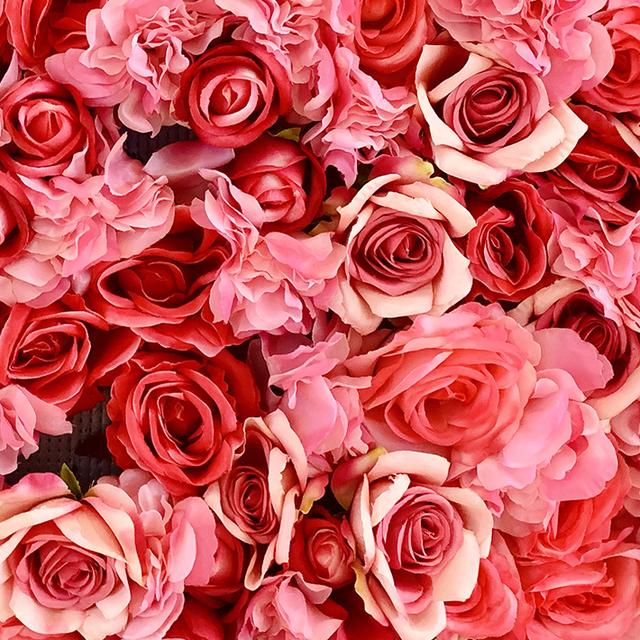 The World of Flowers - Thế giới các loài hoa