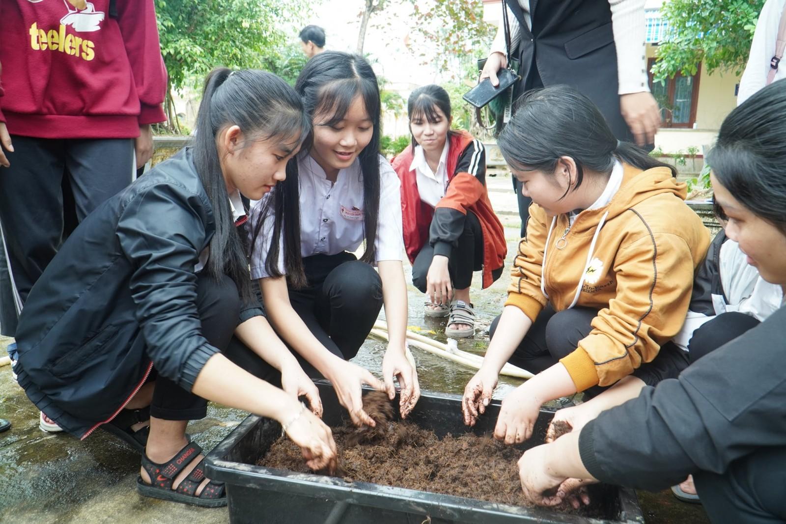 Hướng nghiệp học sinh lớp 12, Trường THPT Nguyễn Trung Trực huyện Phù Mỹ